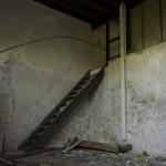 coimbra_forum-3