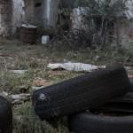 baterias_patria-2