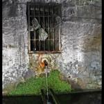 8-Capela do Senhor de Além - O fontanário do parque das merendas