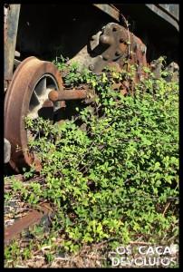 26-A natureza a tomar posse da máquina(cd)