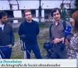 Na RTP 1